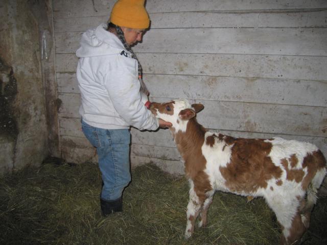 Feeding time, Marjorie feeding June.