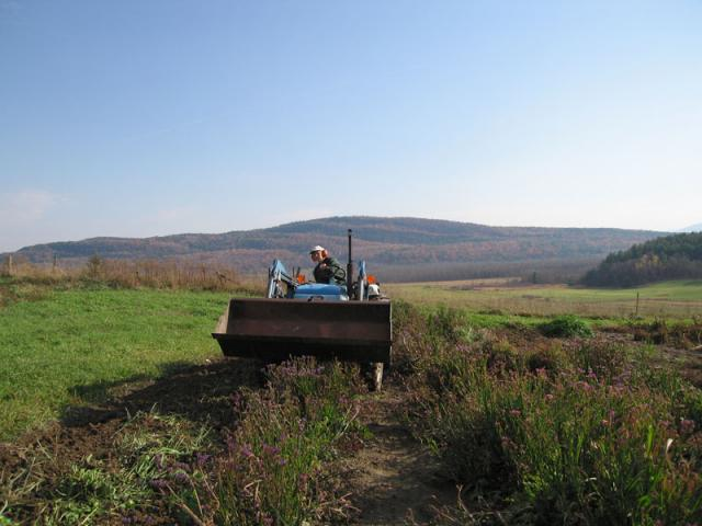 Autumn Tilling - Crops are tilled in for the winter.