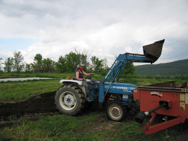 Loading Manure Spreader - Our gardens are organic, the manure makes wonderful compost.