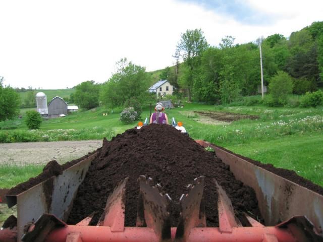 Spreading Manure - Manure add nutrients and tilth to the soil.